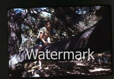 1960s amateur Kodachrome 35mm Photo slide Tween girl with glasses in tree