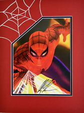 AMAZING SPIDER-MAN PRINT PROFESSIONALLY MATTED HAND SIGNED by ALEX ROSS w COA