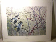Susan A. Walton original, pencil S/N, color print Red-Headed Woodpeckers, 1996