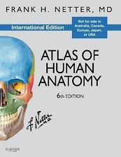 FRANK H. NETTER 6e Atlas of Human Anatomy