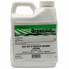 Grass Out Max Clethodim Herbicide 1 Pt Post Emergent Herbicide Kills Weed Grass