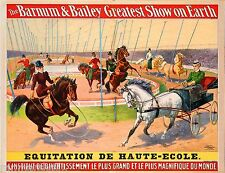 1900 Barnum & Bailey Horses Vintage Circus Advertisement Art Poster Print