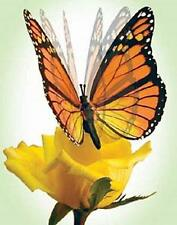 Flexinol Moving Butterfly (Monarch Butterfly)