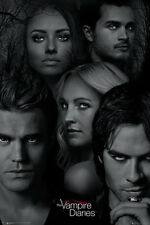 THE VAMPIRE DIARIES - TV SHOW POSTER / PRINT (CHARACTERS / FACES)
