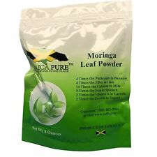Moringa  Powder ( Combination Of Seeds, Blossom, Pods, Leaves & Stems) 8 oz Bag