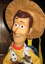 "Disney Toy Story Woody Backpack Large 26"" but Storage Area Small"