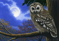 Owl bird full moon tree forest night wildlife OE aceo print painting art