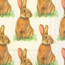 Eddie Rabbit Bunny Easter luxury paper napkins new 20 in pack