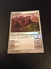 MTG MAGIC RISE OF ELDRAZI STUDENT OF WARFAR CHINESE ETUDIANTE DE LA GUERRE FOIL