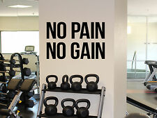 Fitness Motivational Quotes Wall Decal No Pain No Gain Vinyl Sticker Gym 3(fgm)