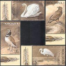 Moldova 2003 Swan/Eagle/Egret/Bustard/Raptors/Birds/Nature 4v set (n15074)