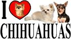 I LOVE CHIHUAHUAS Car Sticker By Starprint - Featuring the Chihuahua