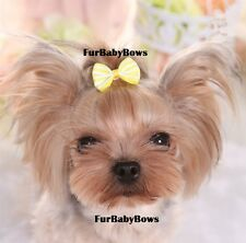 10x PET Puppy grooming bows with Alligator clips Maltese Biewer dog hair Yorkie