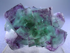 MULTI-COLOR FLUORITE CUBE CRYSTALS w FLUORESCENT PHANTOMS, OKORUSU, NAMIBIA