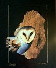 GRASS OWL -LIMITED EDITION / 800 - SIGNED AND NUMBERED - BARK ART PRINT