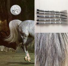 """Genuine Australian Horse Tail 80CM 32"""" Light Gray False Horse Tail EXTENDED"""