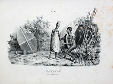 Südafrika Xhosa South Africa Speer Schild Bantu Kaffer Krieger Spear Warrior