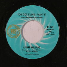 ANDRE WILLIAMS: You Got It And I Want It / I Can't Stop Crying 45 Soul