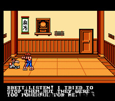 Double Dragon III 3 - Rare Fun NES Nintendo Game