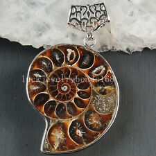 36x59 mm Beatiful Genuine Ammonite Fossil Art Pendant Bead C3635