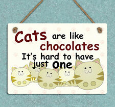 funny style metal hanging sign cats are like chocolates wall door plaque gift