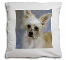 Chinese Crested Powder Puff Dog Soft Velvet Feel Scatter Cushion Ch, AD-CHC3-CPW
