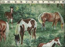 Springs Creative ~ HORSES Valley Crest Paint Scenic 100% Cotton Quilt Fabric BTY