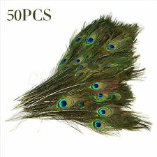 Natural Real Peacock Tail Eye Feather Clothes Jewelry Party Decor Craft 9-12""