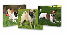 """SET OF 3 CANVAS FRAMES 9""""X12"""" YOUR PERSONALISED PHOTO PICTURES GIFT  DOG PET"""
