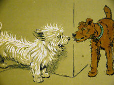 Cecil Aldin 1910 WEST HIGHLAND TERRIER Sizing up the Food Situation Print Matted