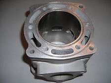 Polaris RMK 700cc Re-plated Cylinder  Casting # 5131220;  $100 Core Deposit!