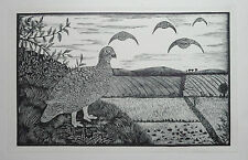 RED GROUSE : Old 1928 BIRDS Game Bird PRINT Woodcut Wood Etching