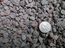 "5 QTS. -  1/4-1/2"" Lava rock for  Bonsai Soil, Succulents, Cactus & soil mixes"