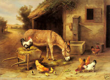 Stunning Oil painting animal donkey ass moke neddy with hens and chicks