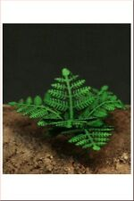 1/35 Scale Greenline - Ferns Plant set - GL-053 laser cut scenic accessory