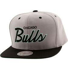 Mitchell And Ness Chicago Bulls Lady Liberty Snapback Cap gray black teal