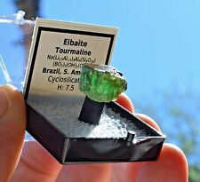 Rare Top End Elbaite Green Tourmaline 13.51 Carat Crystal Specimen Gem 15.6x11.9