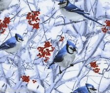 Timeless Treasures ~ BLUE JAYS ~ Bluejay ~  BIRDS ~ 100% Cotton Quilt Fabric BTY