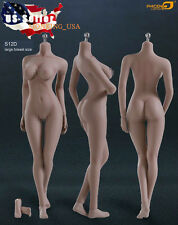 Phicen 1/6 Super-Flexible Seamless SUNTAN Body L Bust Steel Skeleton S12D ❶USA❶