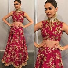 Indian Bollywood, Designer Plus Size Deepika Red & Gold Lehenga, Chanya Choli,