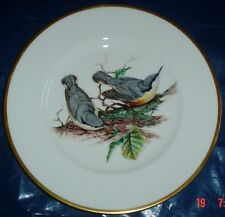 Superb Coalport Large Collectors Plate NUTHATCH - BRITISH BIRD Series