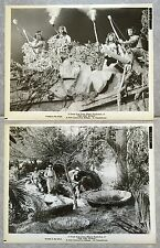 2 Photos originales LE MONDE PERDU The Lost World IRWIN ALLEN Michael Rennie