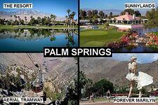 SOUVENIR FRIDGE MAGNET of PALM SPRINGS CALIFORNIA USA