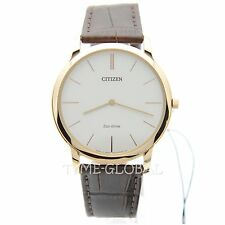 Citizen AR1113-12A Men Water Resistant Gold Toned Brown Leather Strap Watch