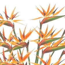 12 x Artificial Bird of Paradise Flowers - Decorative Plastic Tropical Flowers