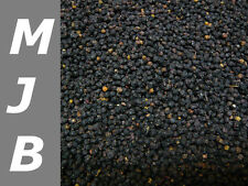500g Holunderbeeren, Sambuci nigri (14,90 €/ 1000g )  getrocknet, natur,Holunder