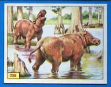 ANIMALI PREISTORICI - Panini 1975 - Figurina-Sticker n. 256 -New