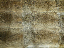 Grey real genuine rabbit fur skin pelt hide fabric material art craft sewing