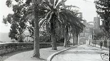 06 Grasse . plaque stéréoscopique . négatif . vers 1900