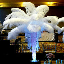 Wholesale 100pcs White Natural quality Ostrich Feathers 14-16Inch/35-40cm Weddin